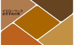<パーソナルカラー>イエローベースにおすすめのブラウン系(茶)